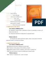 avap-de-scos (2).docx