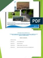 anexo1_directiva002_2017EF6301 (1)