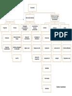mapa taxonomia.docx