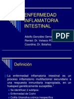 20101017 Enfermedad Inflamatoria Intestinal