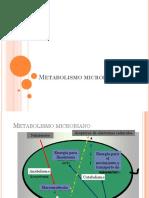 3-Metabolismo.pptx
