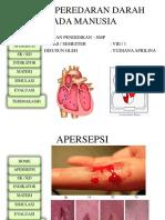 PPT_SISTEM_PEREDARAN_DARAH_PADA_MANUSIA.pptx