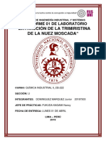 PREINFORME N°01.docx