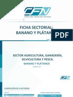 Ficha Sectorial Banano