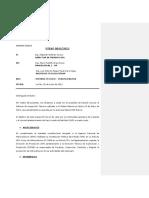 INFORME TECNICO PLM 15.docx