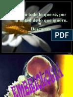 Dialnet-EsclerosisMultiple-4018455