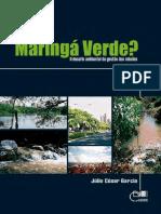 Maringá verde.pdf