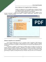 Eco Obstetrico Parametro