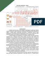 INFECÇÕES CONGÊNITAS.docx