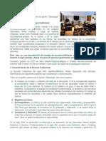 Enfoque Tradicional de La Didactica.docx