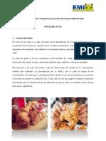 ArielMendezAyala-1 (1).docx