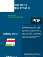 Third and Fourth Sector of Economy