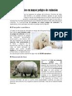 Los animales en mayor peligro de extinción.docx