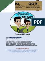 Boletin PDF
