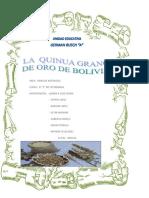 INFORME QUINUA.docx