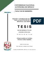 GESTIÓN Y OPTIMIZACIÓN DE PROYECTOS PARA LA EXPLOTACION DE CAMPOS MADUROS.pdf