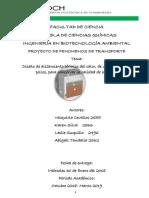 PROYECTO_FENOMENOS_II.docx