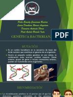 Expo Genetica Bacteriana