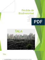 perdida de biodiversidad pp.pptx