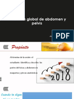 11.-S7-Semana-7-Abdomen-y-pelvis-global.pptx