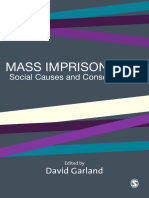 Mass_Imprisonment__Social_Causes_and_Consequences.pdf