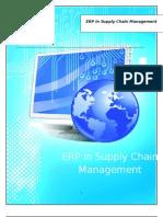 ERP Final Doc 29th Oct[1]