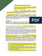 ACTA DE CONSTITUCION Y APROBACION DE ESTATUTOS.2018.docx