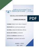 PRUEBA TESTIMONIAL Y PERICIAL.docx