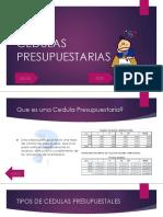 CEDULAS_PRESUPUESTALES_TRABAJO_COSTOS.ppt