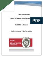 Áreas especializadas.docx