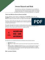 Risk and Hazard.docx