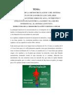 2. ESTRUCTURA DEL SISTEMA CAPILAR.docx