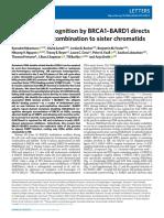 H4K20me0 recognition by BRCA1-BARD1 directs HR to sister chromatids. Nakamura K et al.-Nat Cell Biol 2019.pdf