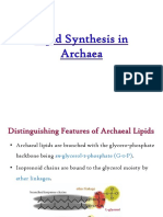 Lipid Synthesis in Archaea