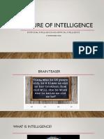Nature of Intelligence