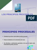 1, PRINCIPIOS PROCESALES