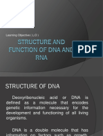 Structure and Function of Dna and Rna