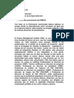 presupuesto PMI.docx
