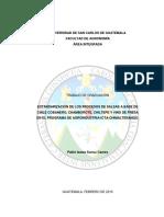 estandarizacion de procesos de salsas.pdf