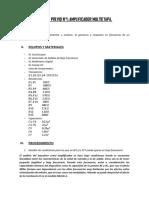 INFORME PREVIO 1 ELECTRONICA 2.docx