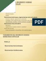 BIOMECANICA Parte 2.pdf