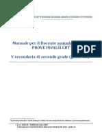 013 Manuale Somministratore Grado 13 ITALIA