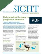 Avian Insight Dermatitis_ Issue 4