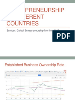 Entrepreneurship in Different Countries