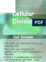 6b cell cycle & cell division.pdf