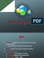 13BIP_TBC.ppt