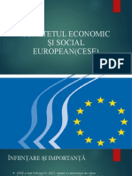 COMITETUL ECONOMIC SI SOCIAL EUROPEAN.pptx