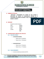 1._RESUMEN_EJECUTIVO