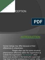 7 Perception