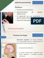 PPT Factores Riesgo y Protectores Consumo SPA